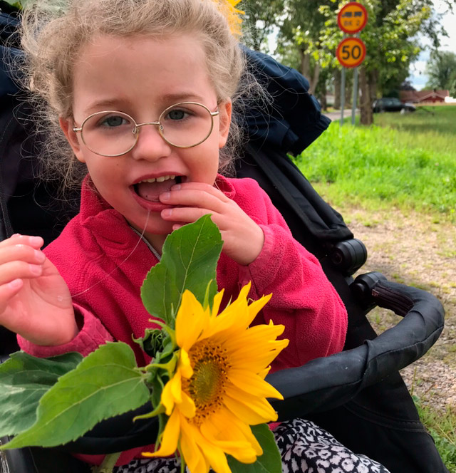 Girl sitts in a carrige and has a Sunflower